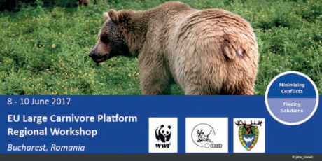 Involving stakeholders in the management and monitoring of large carnivores